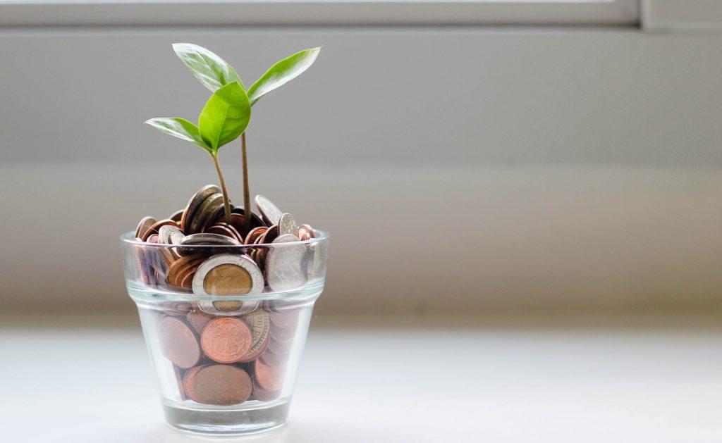 حوكمة المنظمات الغير ربحية